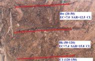 شناسایی ظاهری خاک