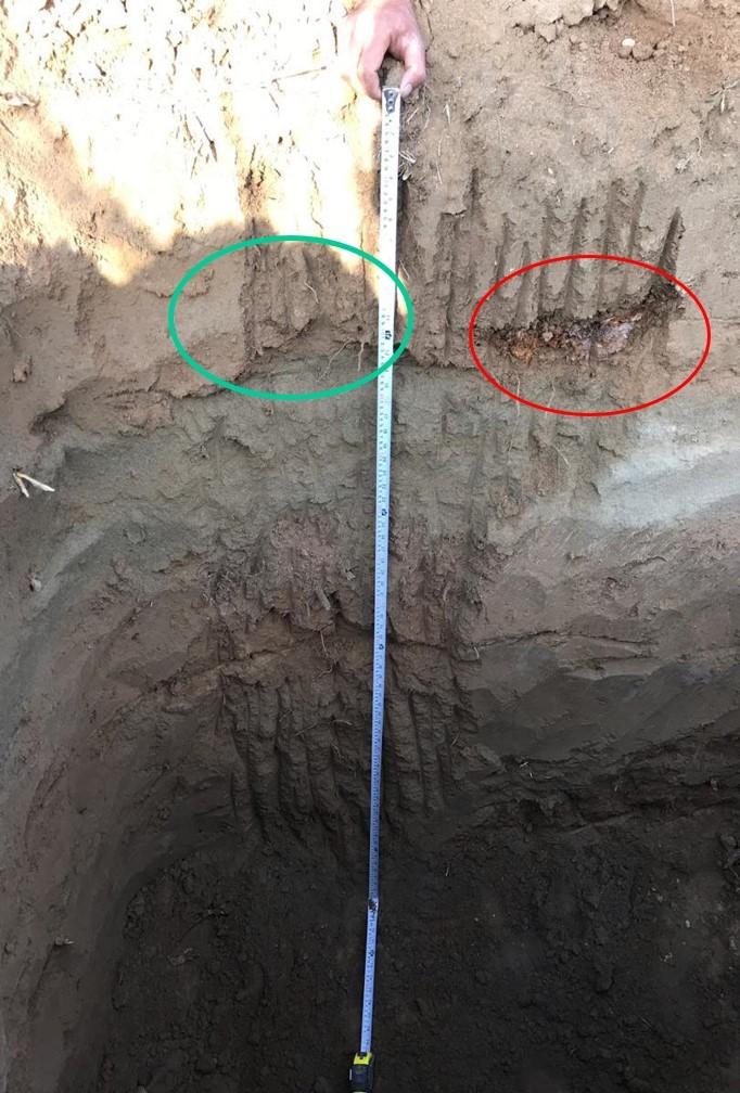 حفر چالکود 2